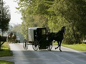 Horse and buggy chase