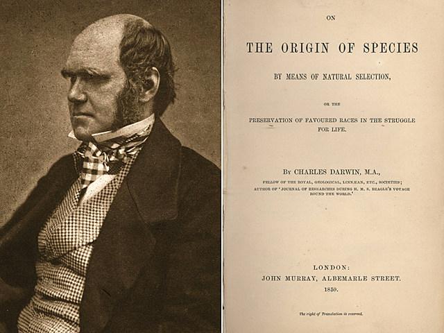 darwin-species