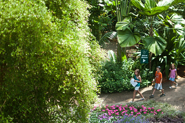 kids on a scavenger hunt at a botanical garden
