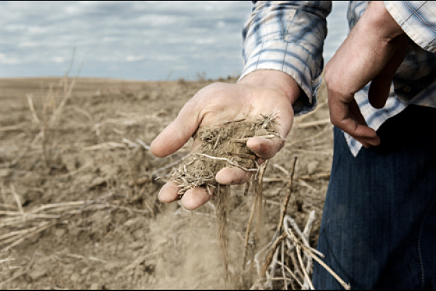 Farmer with handful of dry soil