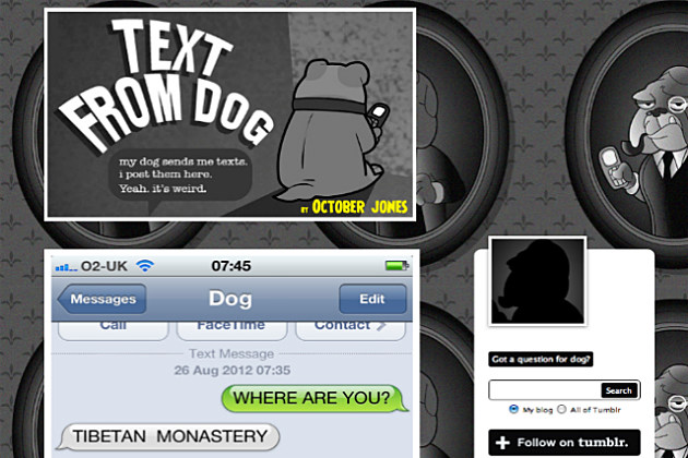 Ever get a text from your dog?