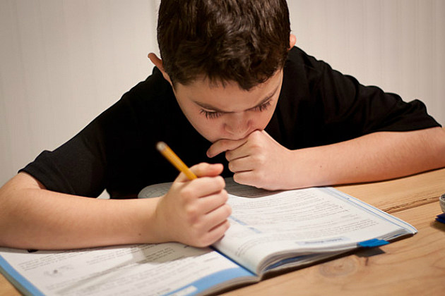 a young student works hard on his homework