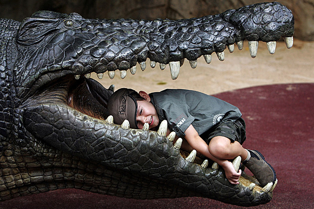 Kid in crocodile's mouth