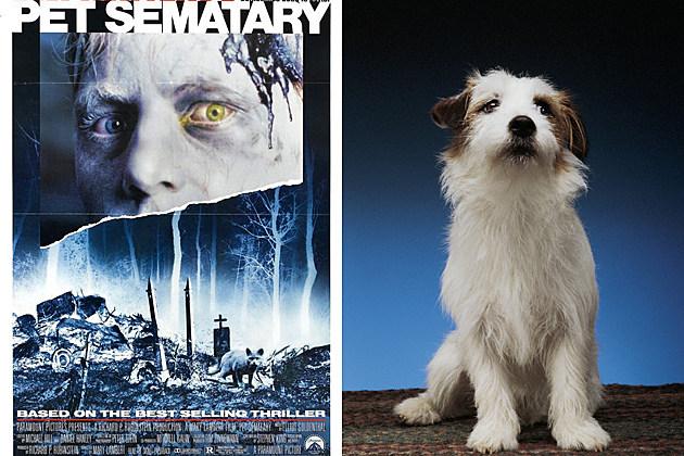 Pet Sematary dog